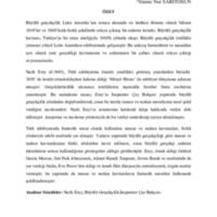 emine-saritosun.pdf