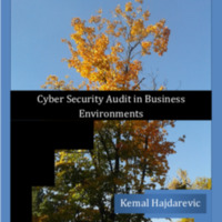 cyber-security-audit-in-business-environments-12.12.2018-1-.pdf